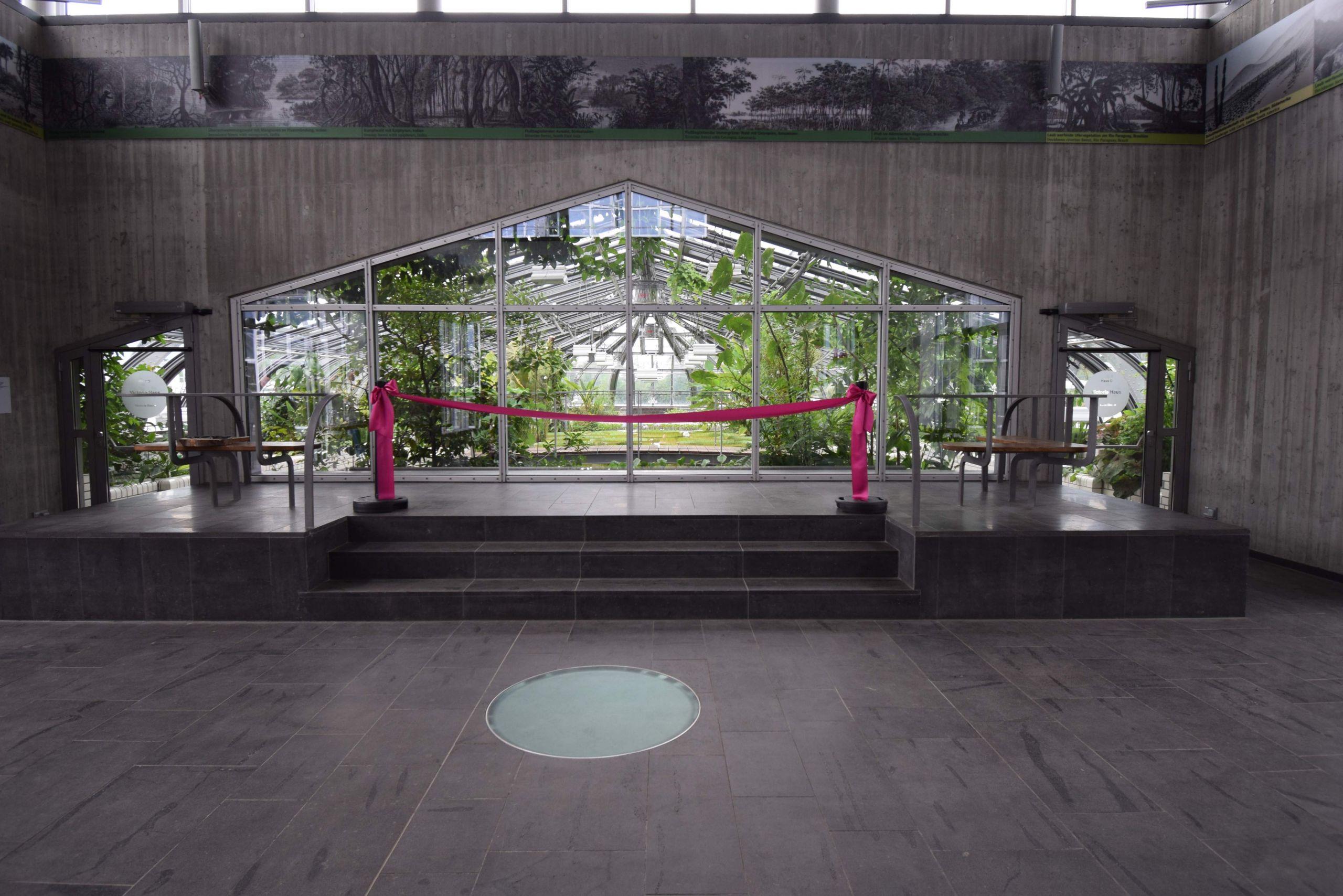 dsc 0960c chr hillmann huber botanischer garten und botanisches museum berlin