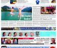 Botanischer Garten Palermo Inspirierend Boulevard Baden Ausgabe Hardt 10 06 2012 by Röser Media