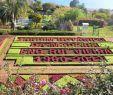 Botanischer Garten Palermo Reizend Bot Garten