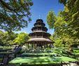 Botanischer Garten Und Botanisches Museum Berlin Dahlem Neu 37 Luxus Hotel Am Englischen Garten