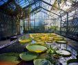 Botanischer Garten Wuppertal Luxus Let Me Introduce You Candeeland · Lomography