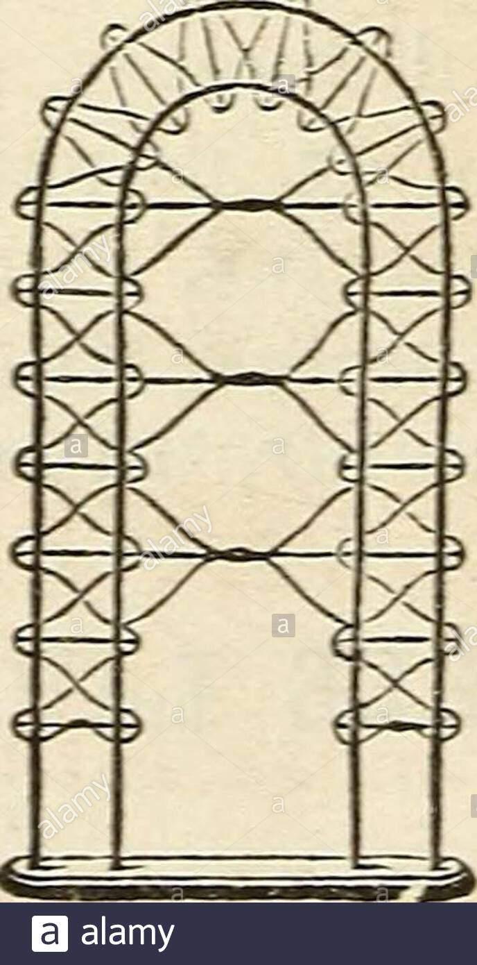dreers garten kalender 1872 m m nr 55 ftxls in jede 80 cts pro doz 2 ft yeranda 8 mide 24 in hisrh 800 je5 cts jperdoz 4001 2an5d3b