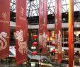 Chinesischer Garten Berlin Genial Veranstaltungen
