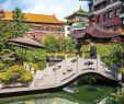 Chinesischer Garten Frankfurt Frisch Hotel Ling Bao Bewertungen Fotos & Preisvergleich Brühl
