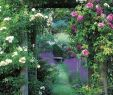Cottage Garten Anlegen Schön 48 Gardening 1