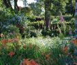 Cottage Garten Genial Litmarsh Farm Self Catering Cottages Bewertungen Fotos