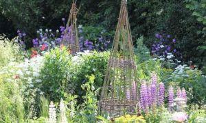 31 Einzigartig Cottage Garten Einzigartig
