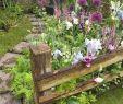 Cottage Garten Reizend Professionelles Paket Mit Lebenslaufvorlagen