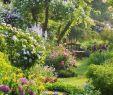 Cottage Garten Schön 25 Beautiful Small Cottage Garden Ideas for Backyard