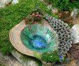Deavita Garten Genial Töpfern Ideen Für Den Garten Sieht Aus Dass Wir Lieben Von