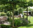 Deavita Garten Luxus Recycling Ideen Garten — Temobardz Home Blog
