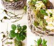 Deko Garten Selber Machen Einzigartig Diy Frühlingskorb Natürlich Dekoriert