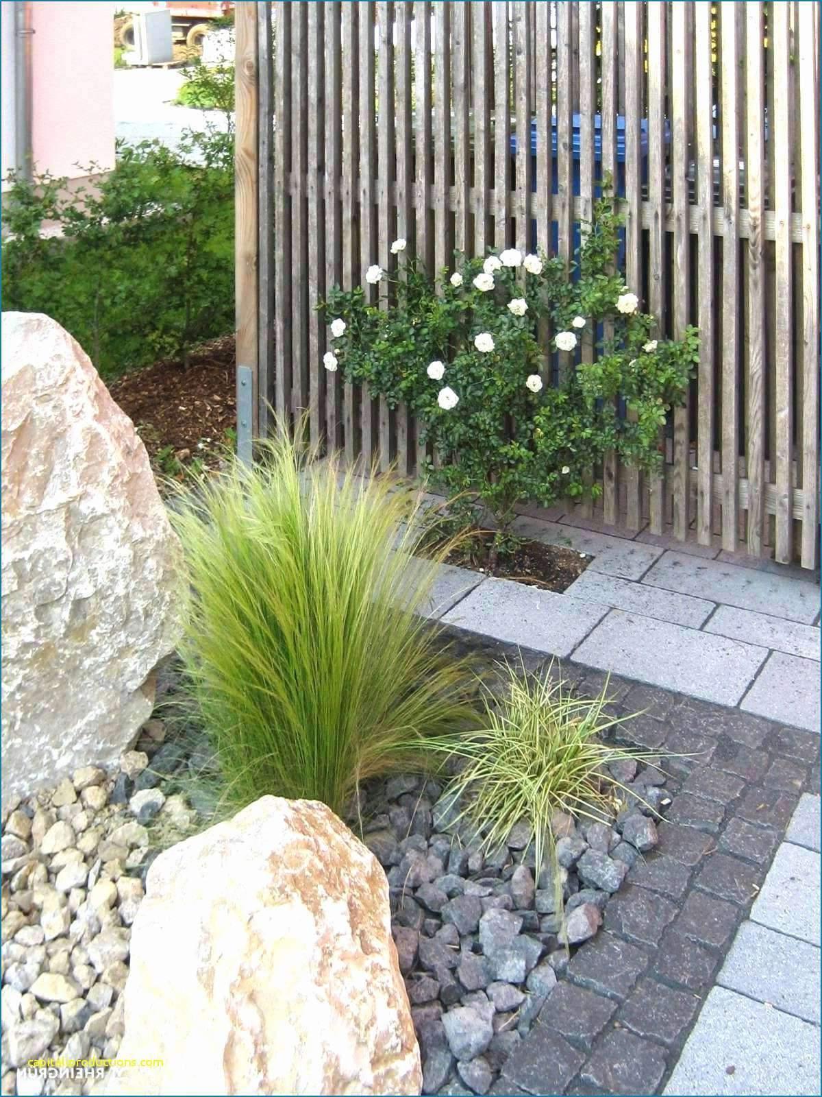 Deko Ideen Mit Steinen Im Garten Einzigartig 31 Elegant Blumen Im Garten Elegant