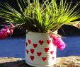 Diy Bastelideen Garten Inspirierend 6 Hübsche Geschenkideen Zur Blechernen Hochzeit