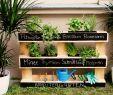 Diy Garten Das Beste Von Immer Mit Vitaminen Versorgt Dank Selbstgebautem