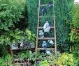 Diy Garten Neu Ein Garten Wie Aus Der Gartenzeitschrift