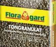 Drainage Garten Luxus Floragard Blähton tongranulat 25l