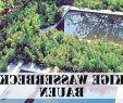 Edelstahlbecken Garten Reizend Garden Spikes Collections Fackeln Garten Das Beste Von