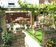 Ein Schweizer Garten Elegant Recycling Ideen Garten — Temobardz Home Blog