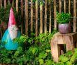 Ein Schweizer Garten Elegant Ringhotel Johanniterbad Bewertungen Fotos & Preisvergleich