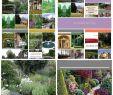 Englischer Garten Anlegen Das Beste Von Englischer Garten Garden Garten Der Wrlitzer Park