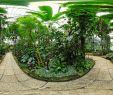 Exotischer Garten Von Monaco Das Beste Von Freiburg Germany Botanischer Garten