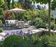 Exotischer Garten Von Monaco Genial 27 Neu Grillplatz Garten Reizend