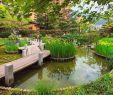 Exotischer Garten Von Monaco Schön Städtereise Monaco Erholung Und Purer Luxus In Südfrankreich