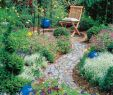 Faszination Garten Genial Gartengestaltung Selber Machen Wir Stellen Dir