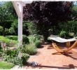 Ferienhaus Mit Eingezäuntem Garten Frisch Haus Im Wald Kaufen Niedersachsen 31 Einzigartig