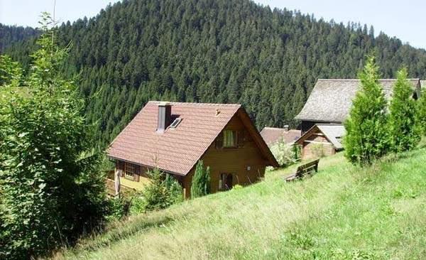 urlaub mit hund schwarzwald ferienhaus 5 personen reinerzau