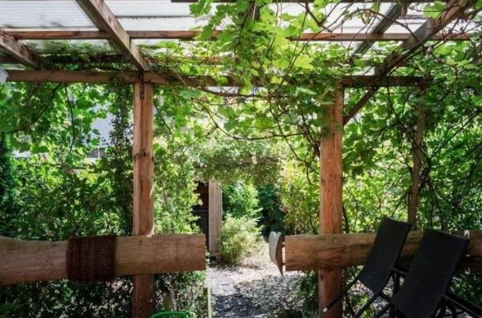 urlaub mit hund ferienhaus gerberhaus schwarzwald deutschland baden wuerttemberg