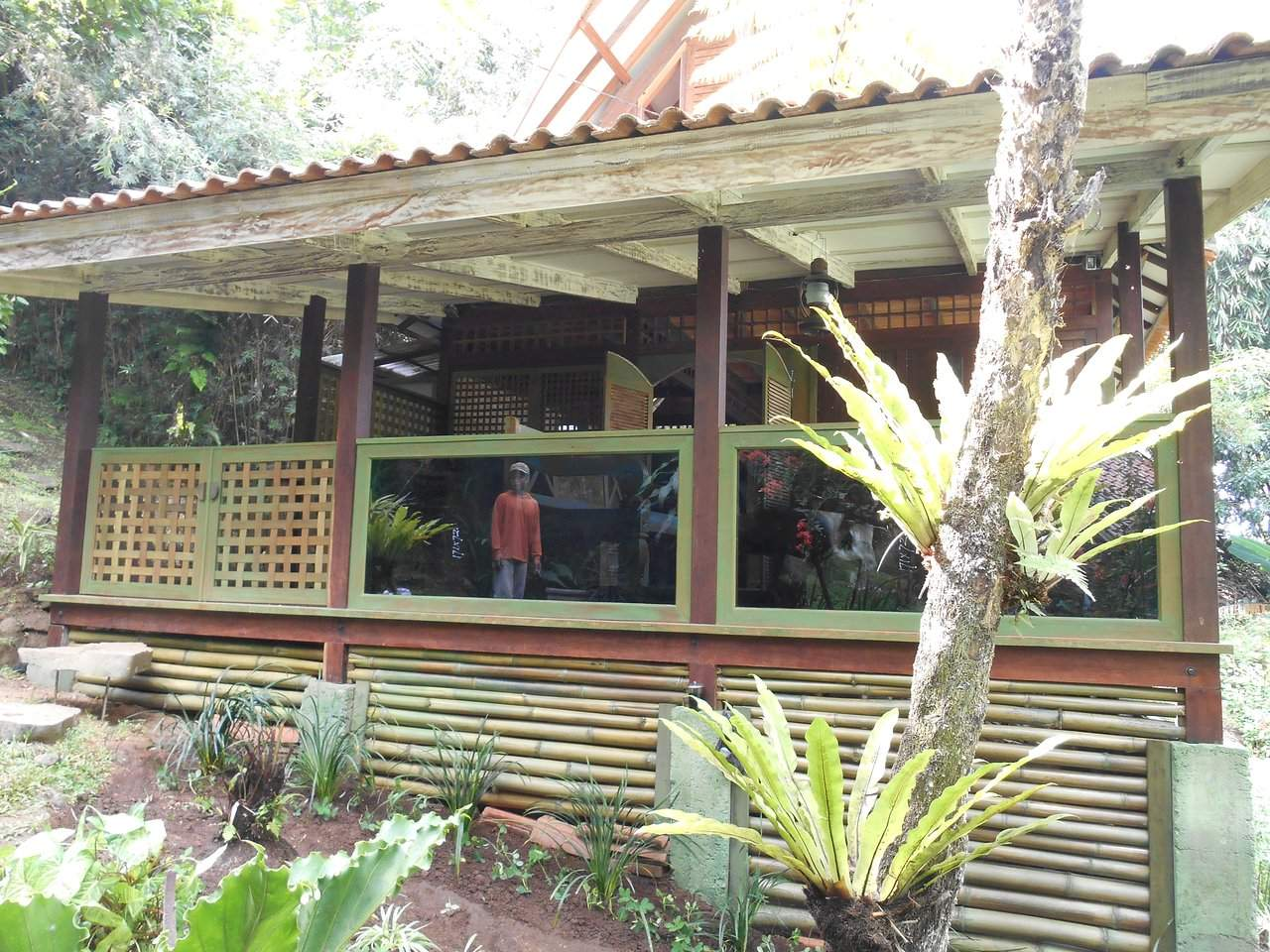 villa garden view view