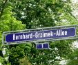 Frankfurter Garten Reizend Bernhard Grzimek Allee –