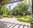 Gabionen Garten Inspirierend Gabionen Gartengestaltung Bilder — Temobardz Home Blog