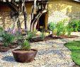 Gabionen Garten Reizend Gabionen Gartengestaltung Bilder — Temobardz Home Blog