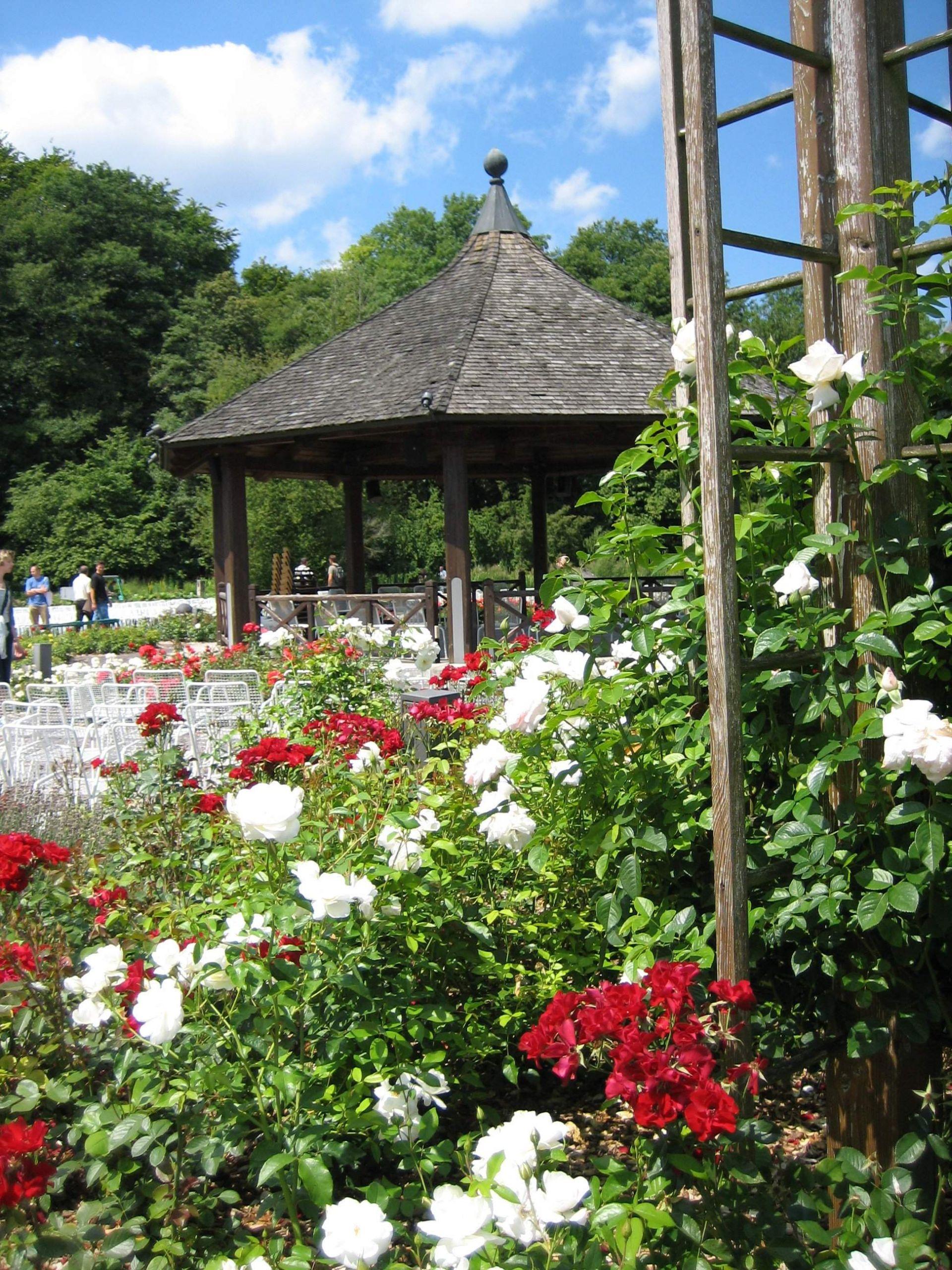 Augsburg Bot Garten Am Rosenpavillon
