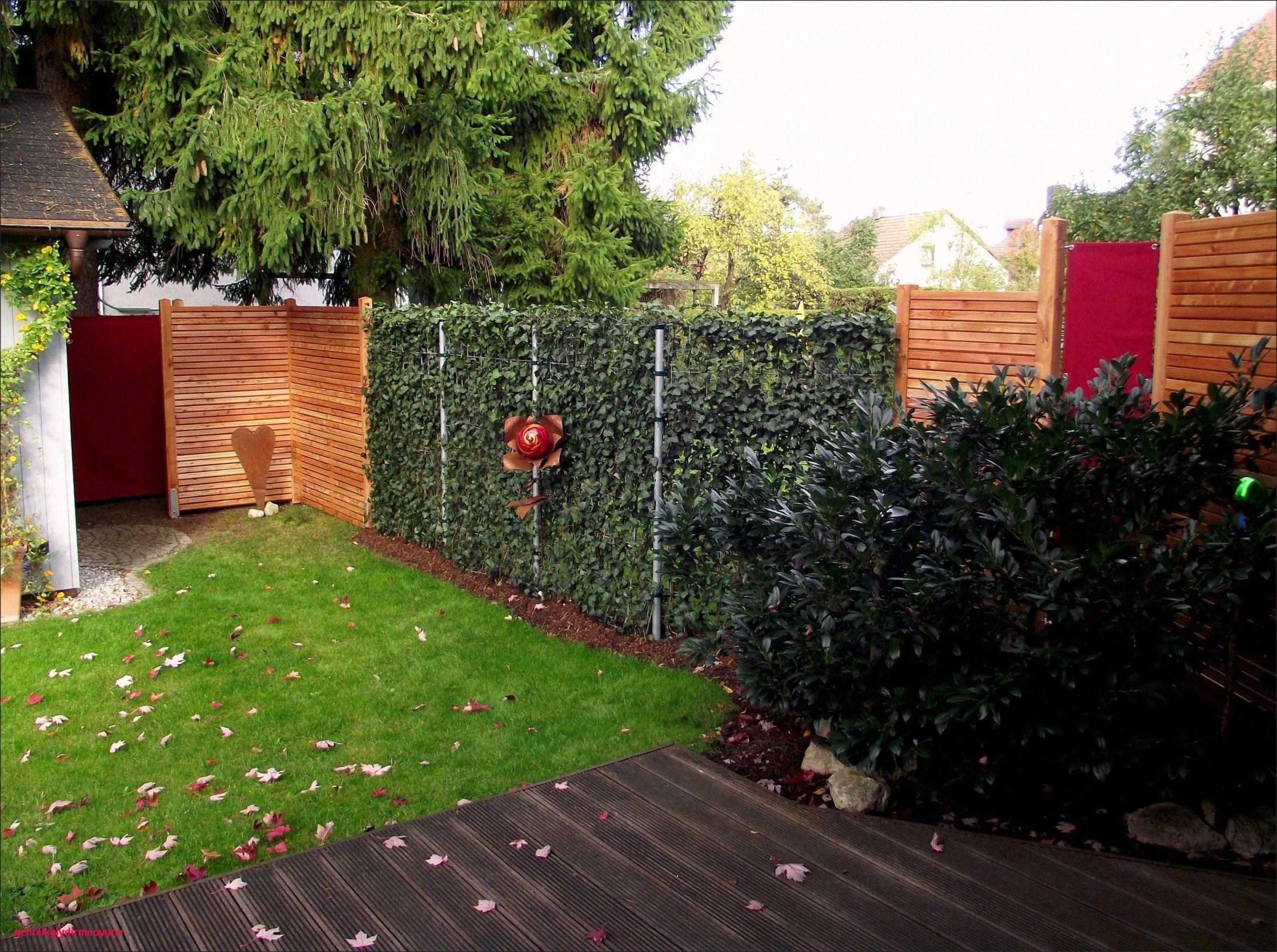 42 schon vorgarten gestalten pflegeleicht modern pic vorgarten gestalten nordseite vorgarten gestalten nordseite 2