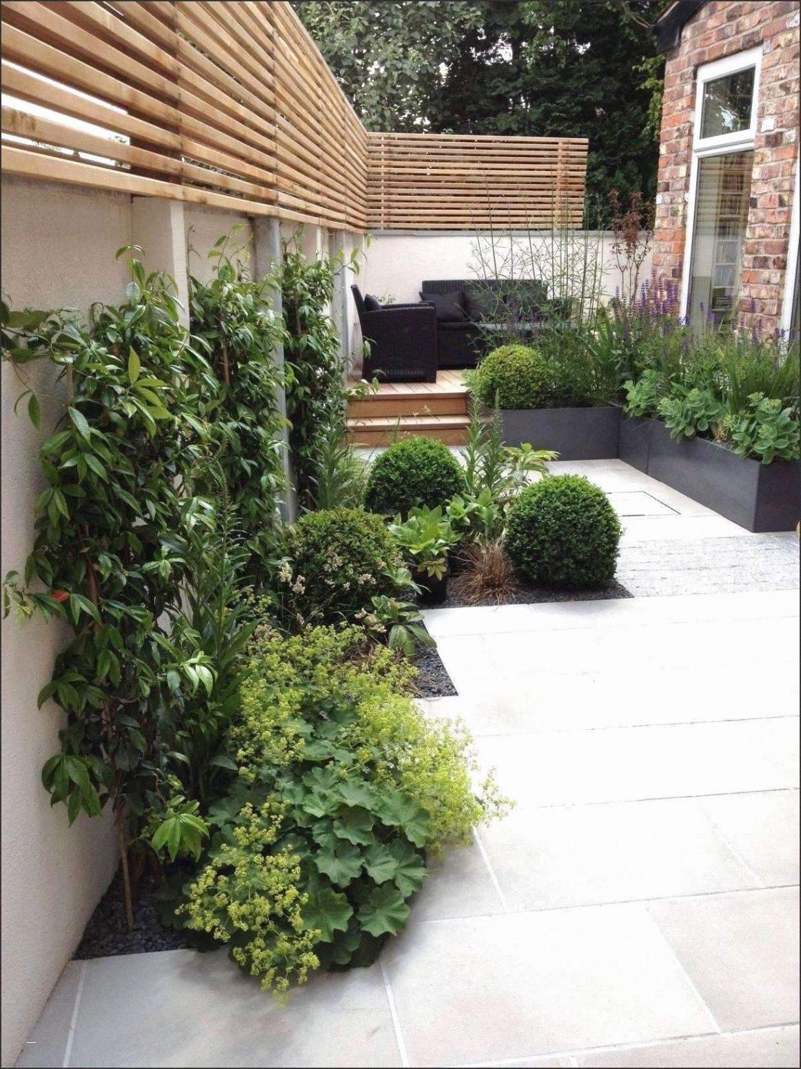 unser garten neu kiesgarten anlegen ideen kollektionen von designs kiesgarten anlegen ideen kiesgarten anlegen ideen