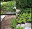 Garten Anlegen Plan Luxus 34 Elegant Treppen Im Garten Hanglage Einzigartig