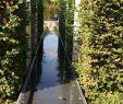 Garten Berlin Frisch Gärten Der Welt
