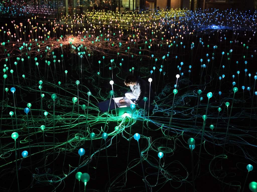 Bruce Munros installation 004