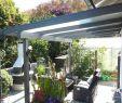 Garten Bewässerungssystem Schön Grosse Pflanzen Für Innenräume — Temobardz Home Blog