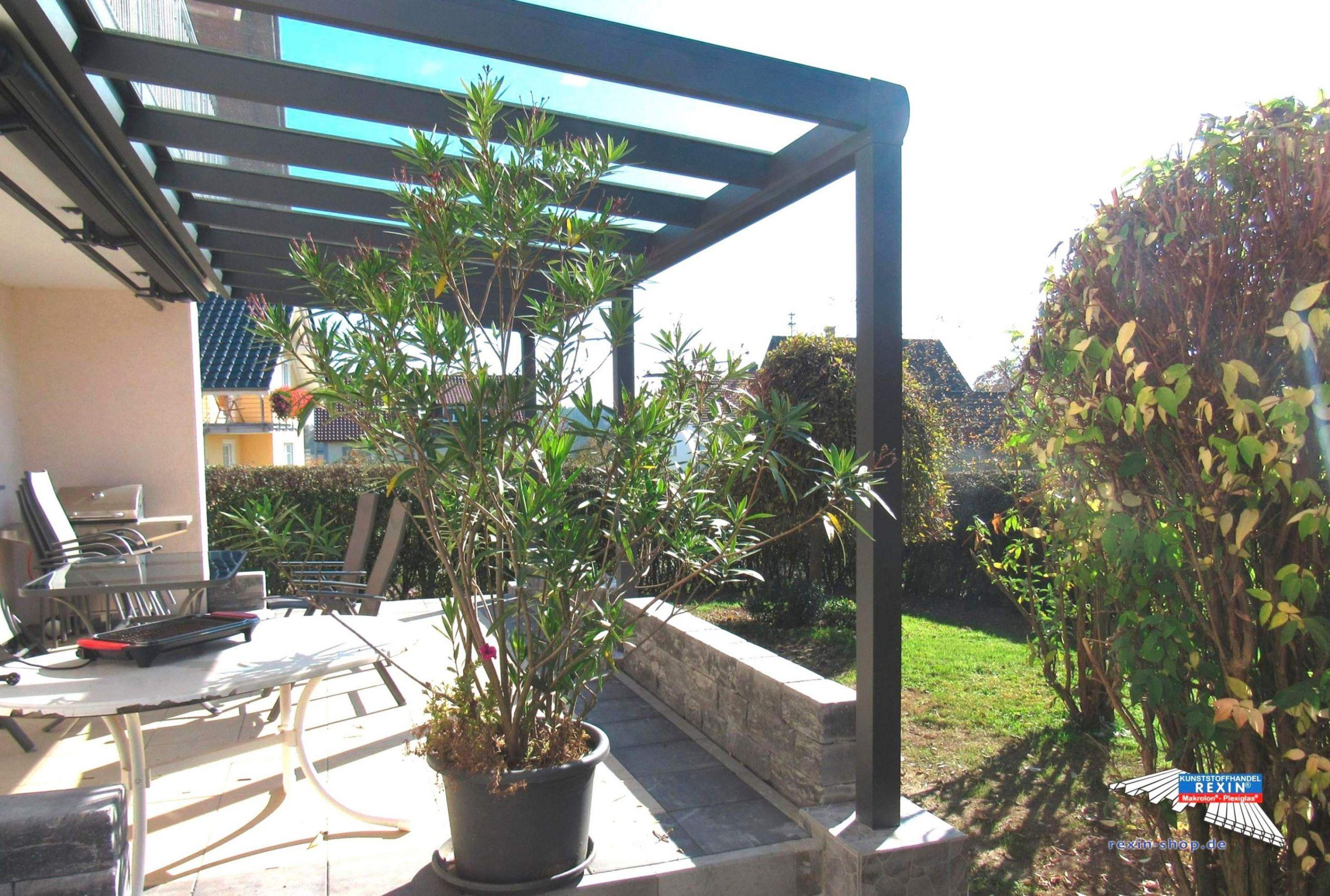 40 neu kleiner balkon ideen pflanzen pflanzen als sichtschutz balkon pflanzen als sichtschutz balkon