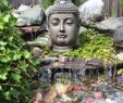 Garten Buddha Frisch A Buddha In Our Garden Budas