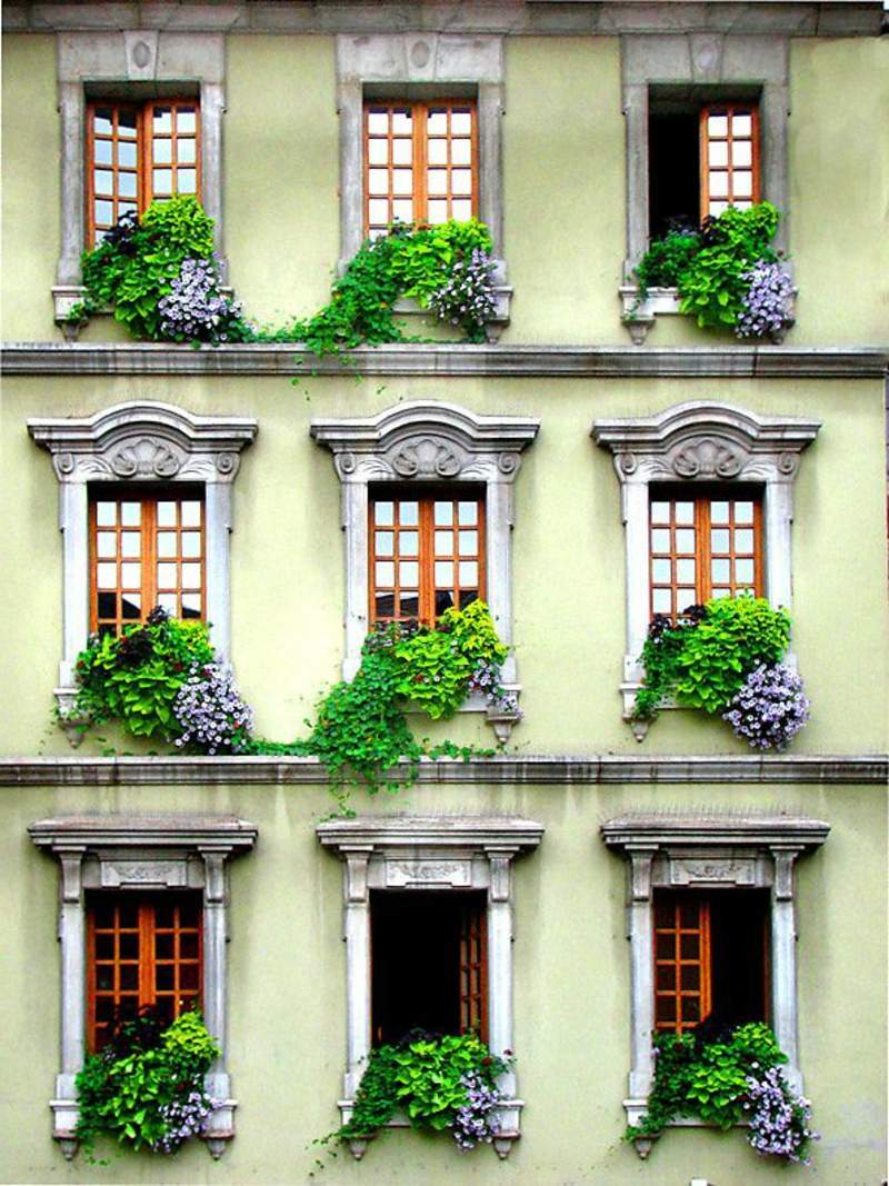 garten busche inspirierend sadzenie balkonu 60 oryginalnych pomysac282c2b3w of garten busche
