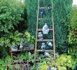 Garten Dekoration Frisch Ein Garten Wie Aus Der Gartenzeitschrift