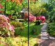 Garten Englisch Genial Natur Panorama Xl Bedruckte Sichtschutzstreifen Für Doppelstabmattenzaun