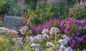 36 Frisch Garten Englisch Reizend