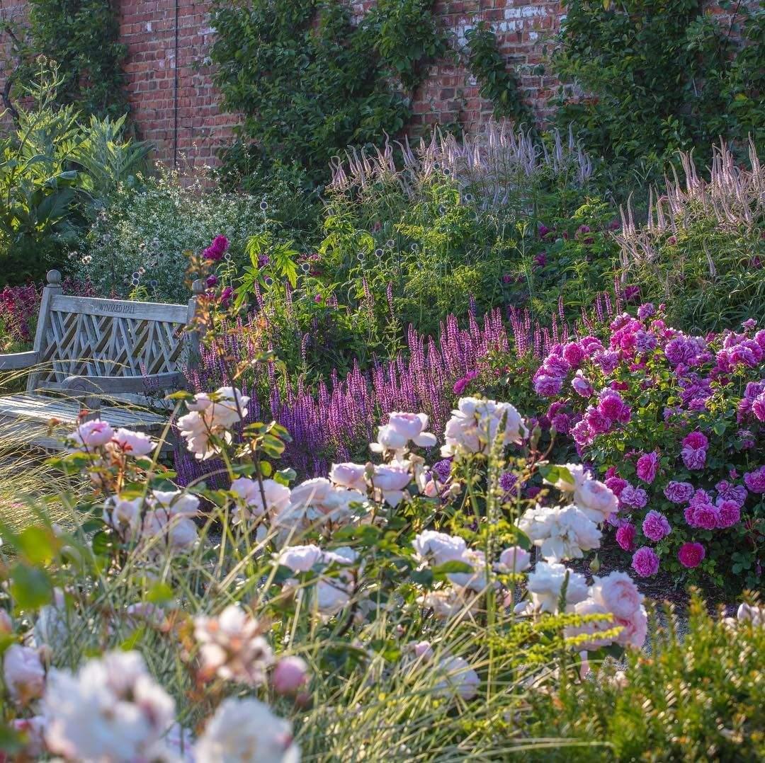 Garten Englisch Reizend Awbassociates Gardendesign Rosegarden Walledgarden Roses